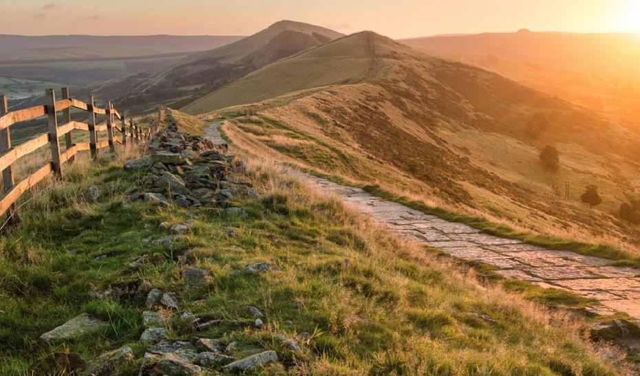 A Green Future: 25yr Plan. Does it Deliver anything new for our Wildlife?